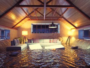 water damage cleanup garner, professional water damage cleanup garner, water damage garner