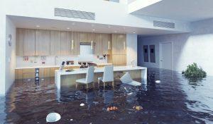 water damage raleigh, water damage restoration raleigh, water damage cleanup raleigh